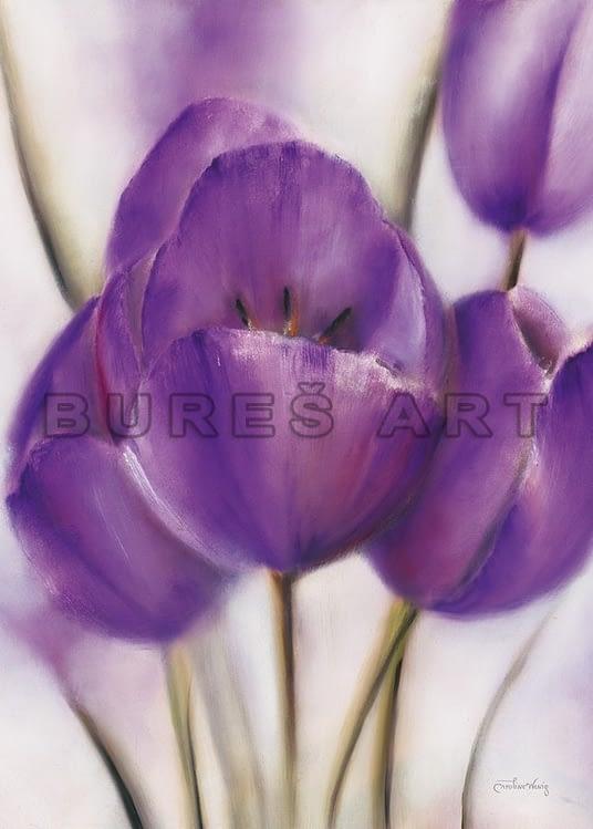 Tablou violet