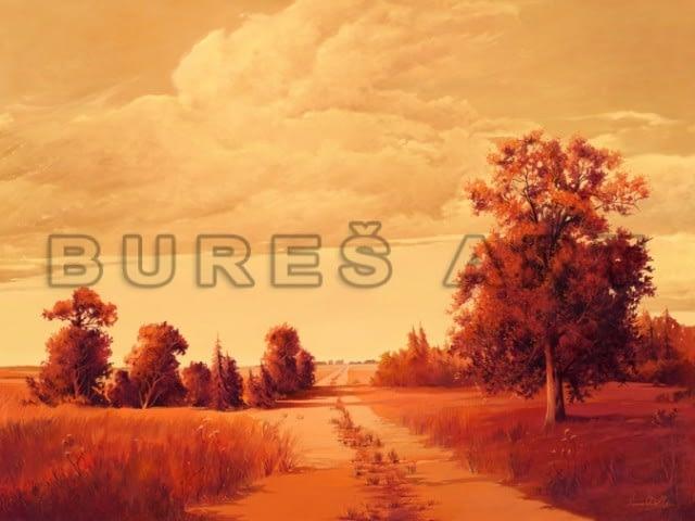 tablou-decorativ-peisaj-cu-drum-inramat-8367580
