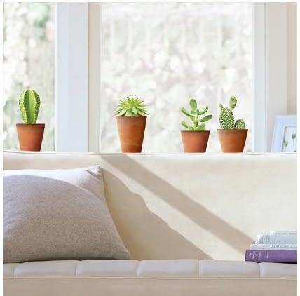 """Sticker de geam """"Ghivece cu cactus"""""""