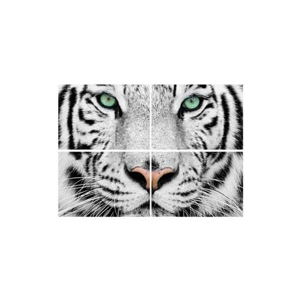 fototapet animale